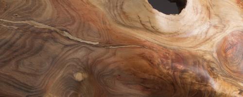 Oak Ovoid #2
