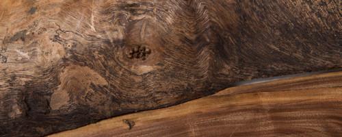 Black Walnut Sliced Branch