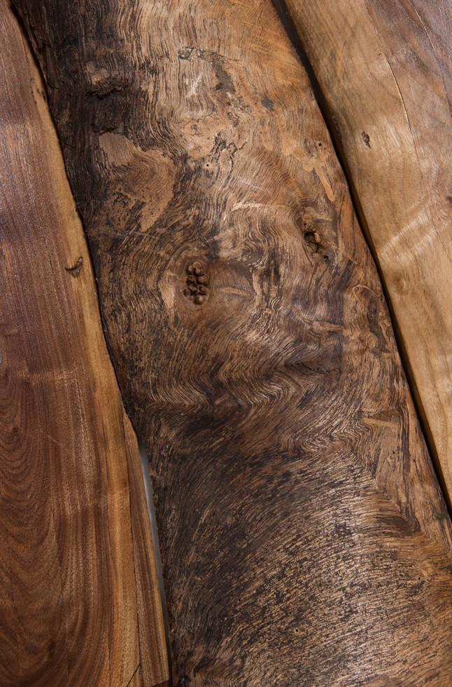 Black Walnut Sliced detail